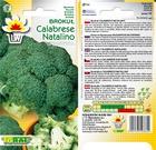 Brokuł Calabrese Natalino [1g] średnio późny (2)