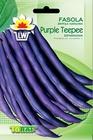 Fasola Purple Teepee [30g] - fioletowostrąkowa, szparagowa wczesna (1)