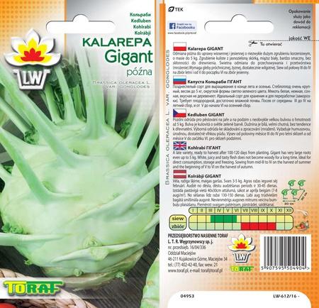 Kalarepa Gigant [2g] -późna (1)