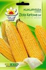 Kukurydza Złota Karłowa [20g] - bardzo wczesna (1)