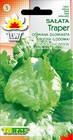 Sałata Traper [1g] - lodowa, krucha (1)