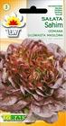 Sałata Sahim [1g] - masłowa (1)