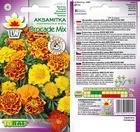 Aksamitka rozp. Brocade [1g] (2)