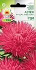 Aster igiełkowy Inga róż. [1g] (1)