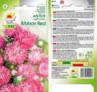 Aster karłowy Ribbon Red [0,5g] (2)