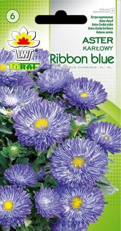 Aster karł. Ribbon Blue [0,5g] (1)