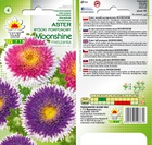 Aster pomponowy Moonshine [0,5g] (2)