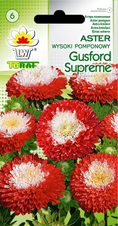 Aster pomponowy Gusford S. [1g] (1)
