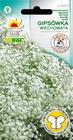Gipsówka wiech. biała [0,5g] (1)