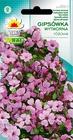 Gipsówka wytw. róż. [1g] (1)