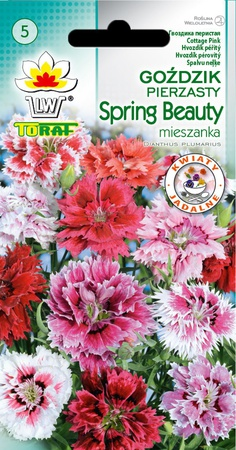 Goździk pierz. Spring Beauty [0,5g] (1)