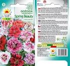 Goździk pierz. Spring Beauty [0,5g] (2)