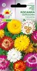 Kocanka ogrodowa mix [0,5g] (1)