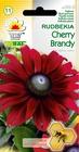 Rudbekia Cherry Brandy [0,1g] (1)
