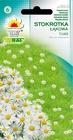 Stokrotka łąkowa biała [0,2g] (1)