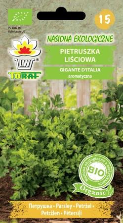 BIO Pietruszka Gigante D'italia (1)