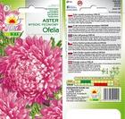 Aster peon. Ofelia różowy [1g] (2)