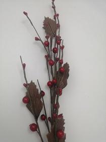 Gałązka jesienna jarzębina